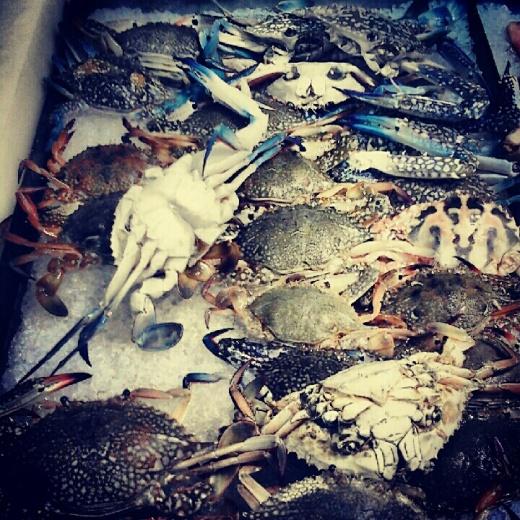 Fish Market, Samut Sakhon, Thailand